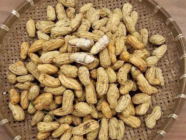 Tìm hiểu đậu phộng đem lại lợi ích gì cho sức khỏe?